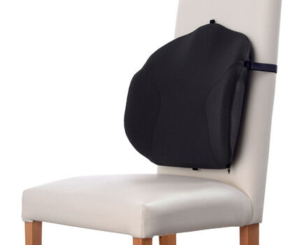 Posture Back Cushion